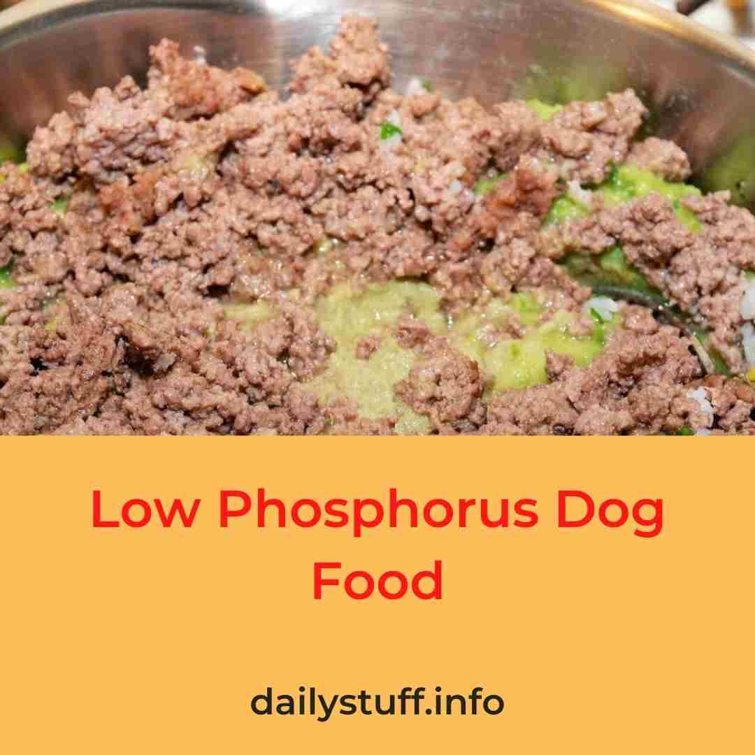 Low Phosphorus Dog Food